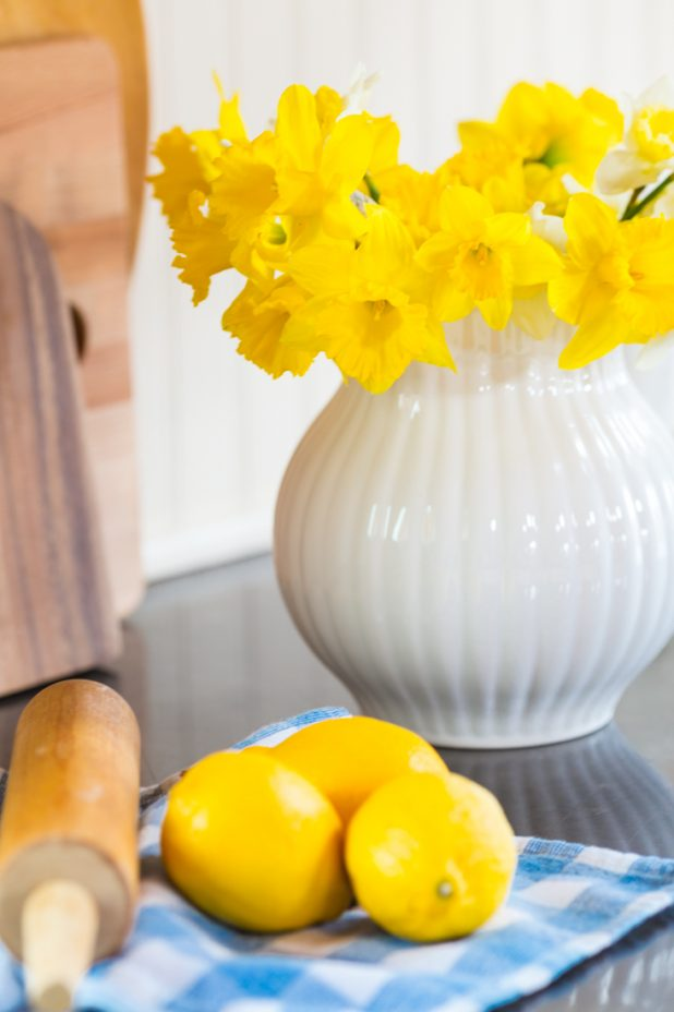 Daffodil Blooms In An White Pitcher Paired With A Blue and White Gingham Tea Towel