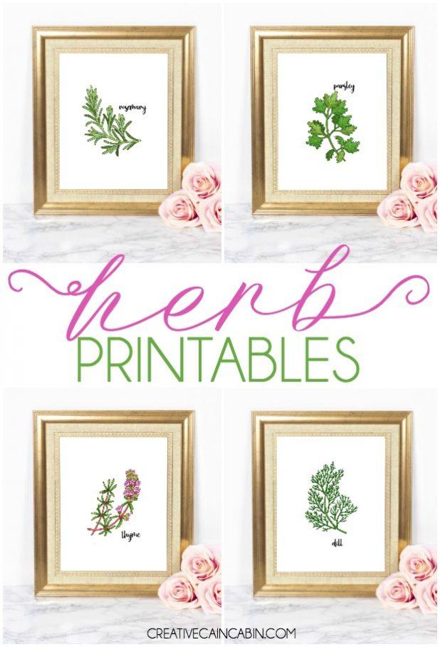 Herb Printables, Botanical Printables, Parsley, Dill, Rosemary, Thyme, Free Herb Artwork