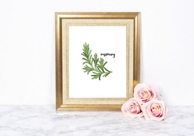 Rosemary Herb Printable