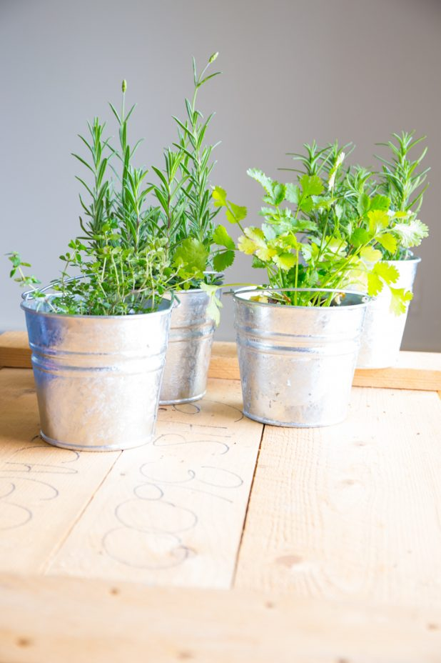 Small Space Living Herb Garden