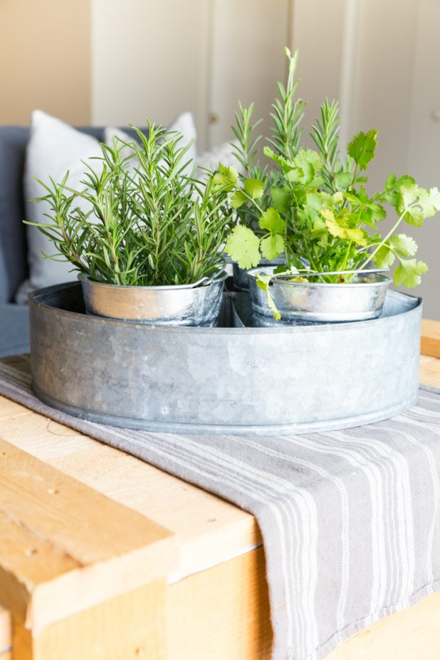 Small Space Apartment Herb Garden In Galvanized Containers