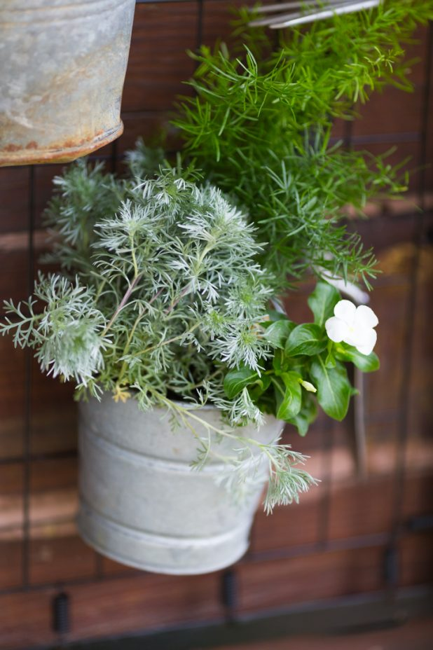 Galvanized bucket loaded with annuals attached to an old set of crib springs.