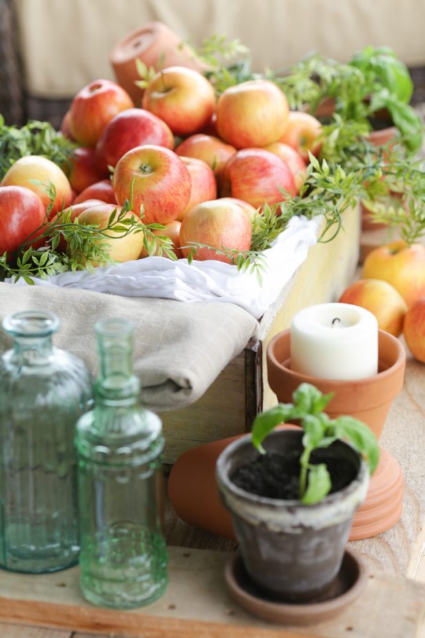 Rustic Fall Decor Using Apples, Herbs and Sea Glass Green Bottles