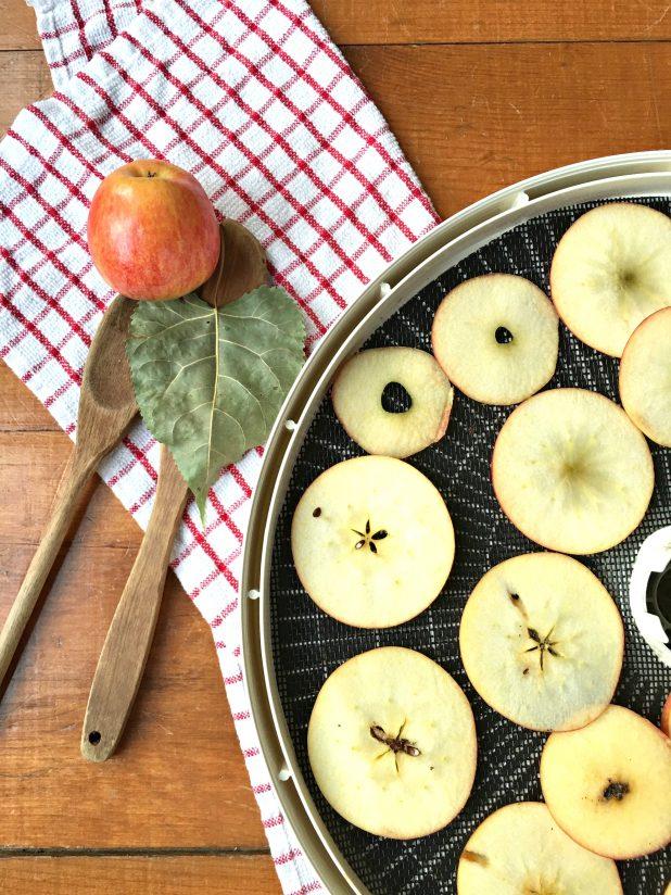 Apple Snack Chips