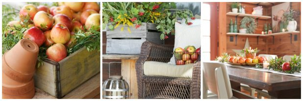Ways to Use Apples In Your Fall Decor