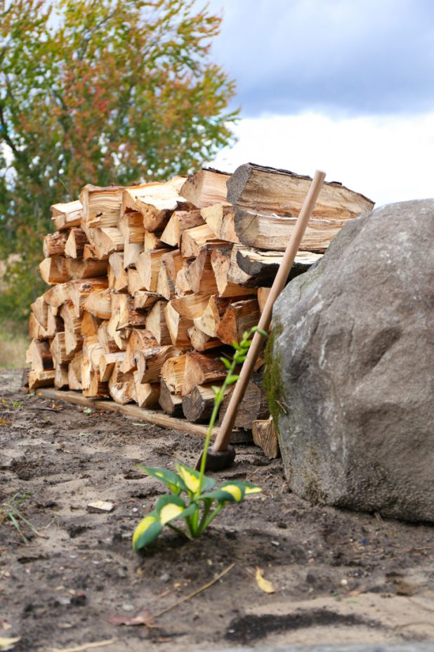 Wood Pile for Fire Pit