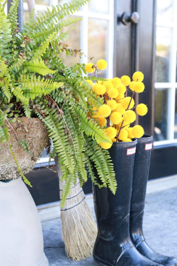 Black Painted Basement Door, Hunter Boots, Ferns, and Yellow Ball Stems