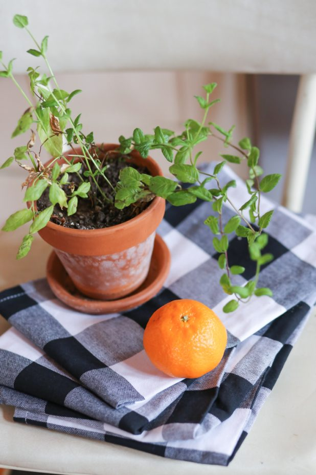 Black and White Buffalo Check Napkins, Potted Mint Plant, Oranges