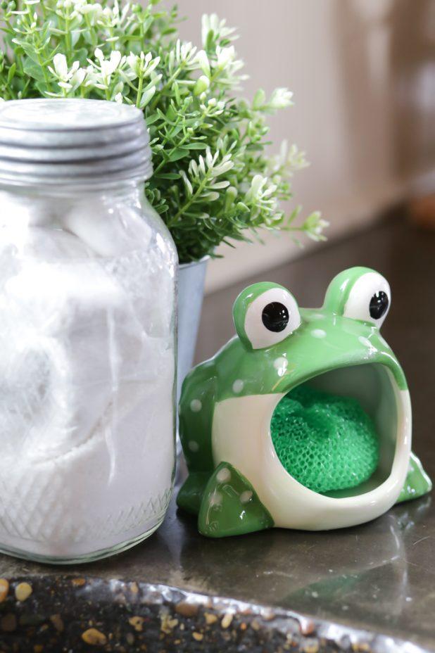 Frog Scrubby Holder