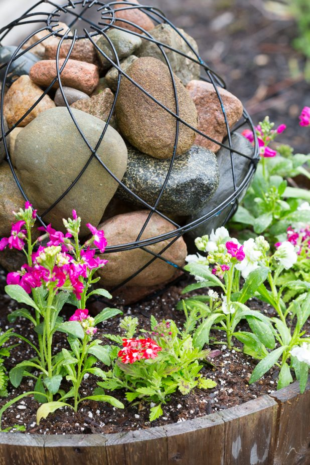 Orb Filled With Field Stone Surrounded With Summer Annuals In A Whiskey Barrel