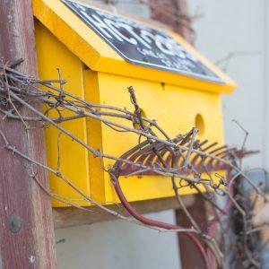 Junk Birdhouse Garden Art