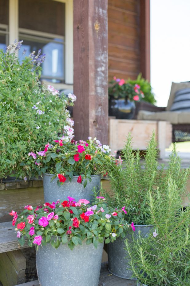 Flowers on the steps of a log home kept in galvanized buckets