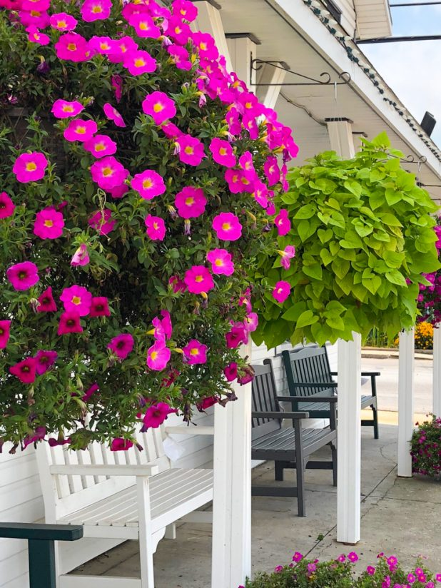 Oversized Hanging Baskets