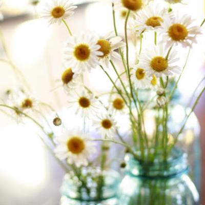 Wildflower Centerpiece #1