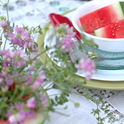 Watermelon Vase and a Picnic Snack