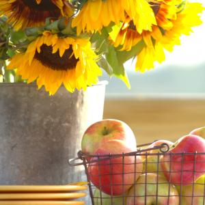 Sunflowers | Apples | Fall Inspiration | CreativeCainCabin.com