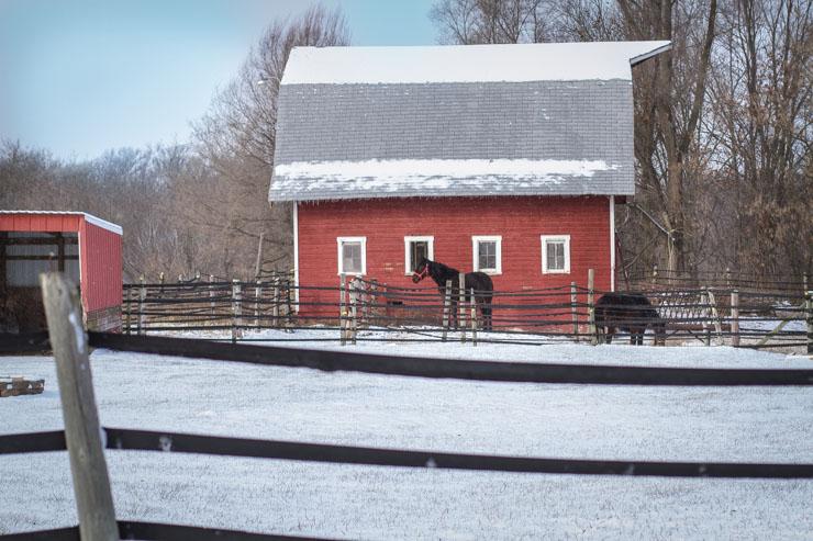 Winter Horse Barn