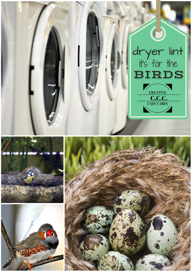 Dryer Lint it's for the Birds