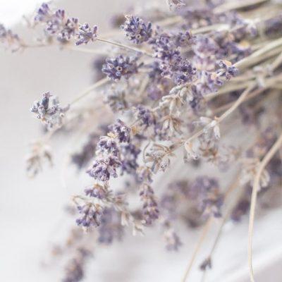 Lavender Vacuum Aromatherapy