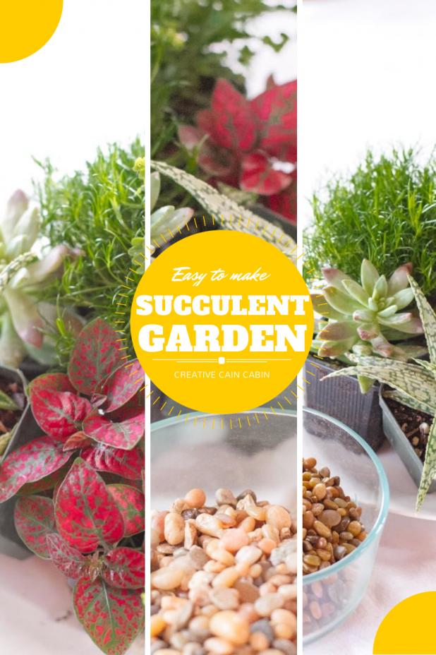 Easy to Make Mini Indoor Succulent Garden