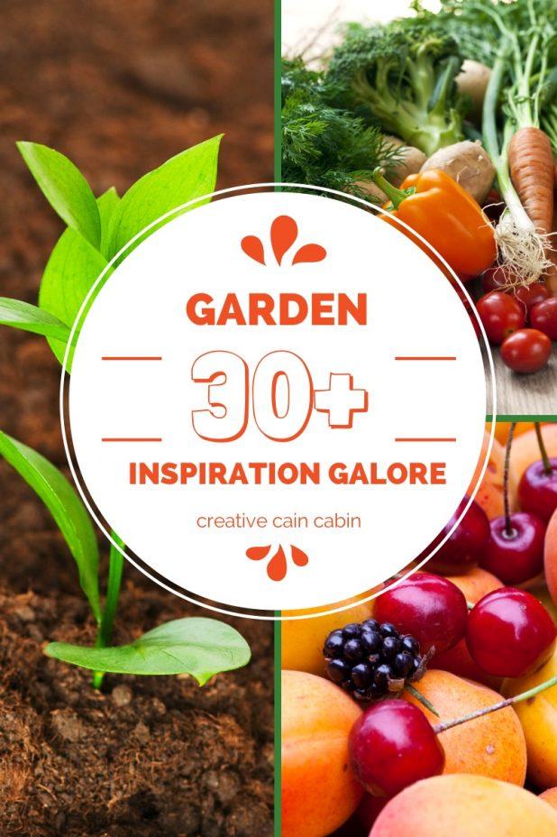 Garden Inspiration Galore ~ Over 30 Ideas, Tutorials, Tips and Tricks