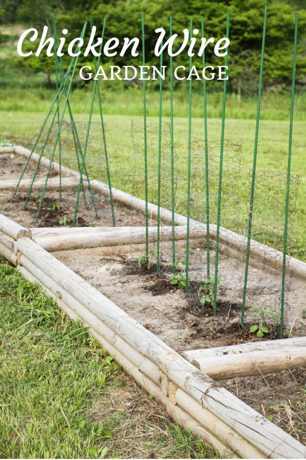 Chicken Wire Garden Cage | Keep the Deer From Eating Your Garden | twitter.com/CCainCabin | http://www.pinterest.com/dawncain/ | twitter.com/CCainCabin | http://www.pinterest.com/dawncain/ | www.facebook.com/creativecaincabin | #GardenCage
