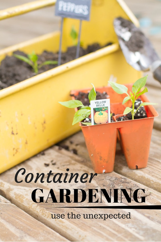 Container Gardening | Use the Unexpected | Use Containers You Already Have | Twitter.com/CCainCabin | pinterest.com/dawncain/ | #ContainerGardening