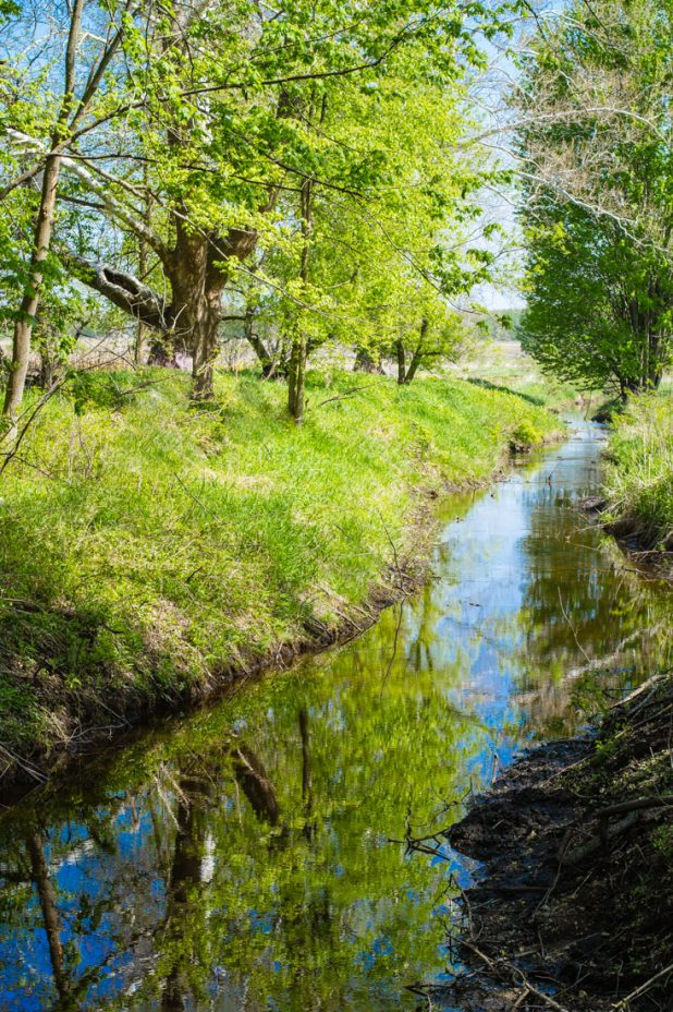 Country Stream | Pure Michigan | Country Living | https://twitter.com/CCainCabin | www.facebook.com/creativecaincabin | http://www.pinterest.com/dawncain/ | #Michigan #CountryLiving