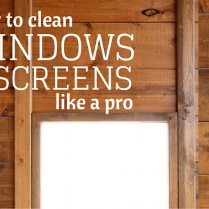 How to Clean Windows & Screens Like a Pro Using Ordinary Household Cleaners | Creative Cain Cabin