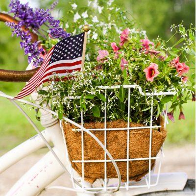 Patriotic Bicycle Basket