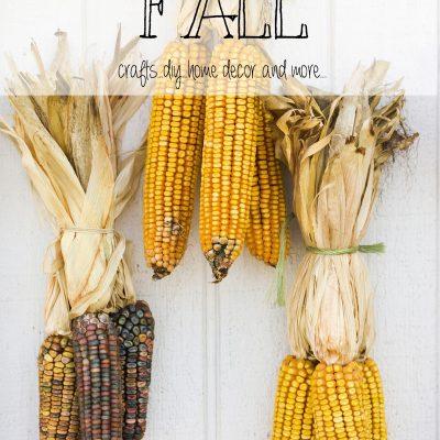 Fall Inspiration Over 50+ Ideas