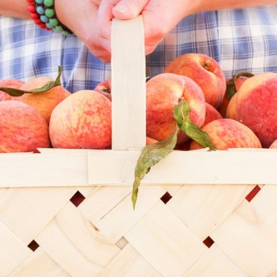 How to Dehydrate Peaches in a Food Dryer