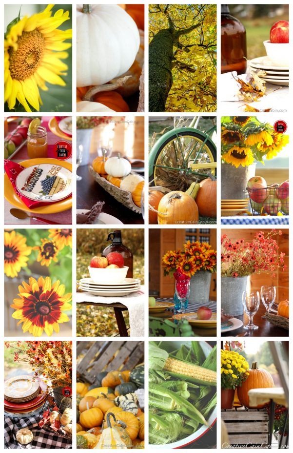 50+ Fall Ideas  Creative Cain Cabin
