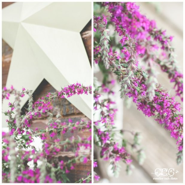 Purple Loosestrife | Wildflower | Creative Cain Cabin