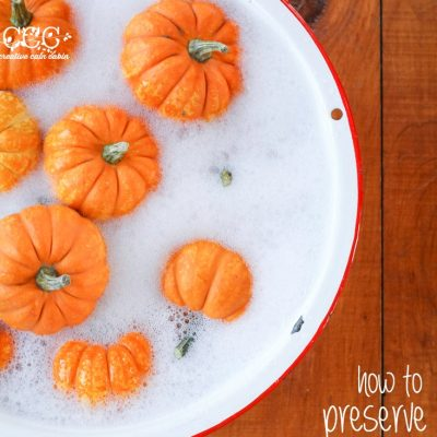 How to Preserve Pumpkins for Decorating