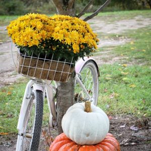 Fall Bike Basket | Creative Cain Cabin