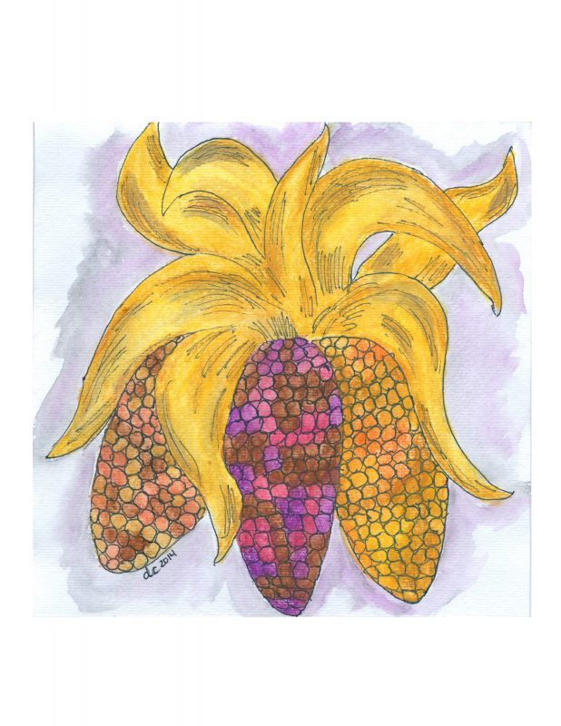 Indian Corn Watercolor | Creative Cain Cabin