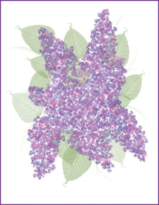 Lilac Printable   CreativeCainCabin.com