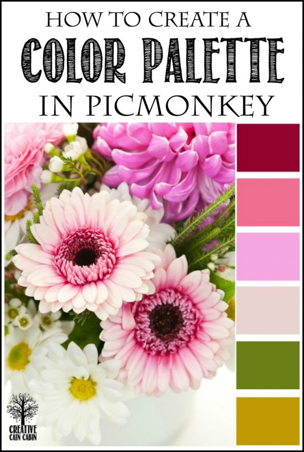 How to Create a Custom Color Palette In PicMonkey | Step by Step Photo Tutorial | CreativeCainCabin.com