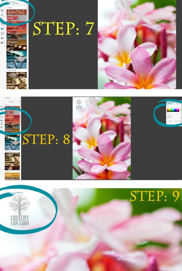 How To Create a Transparent Watermark in PicMonkey   Step by Step Photo and Text Instructions   CreativeCainCabin.com