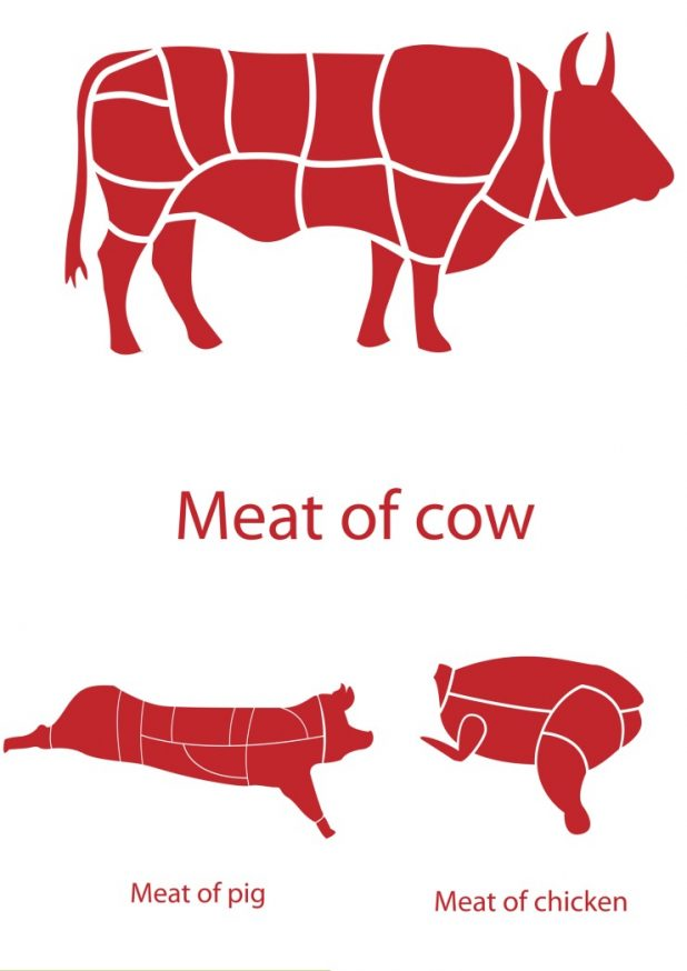 How to Slash Your Meat Costs   CreativeCainCabin.com
