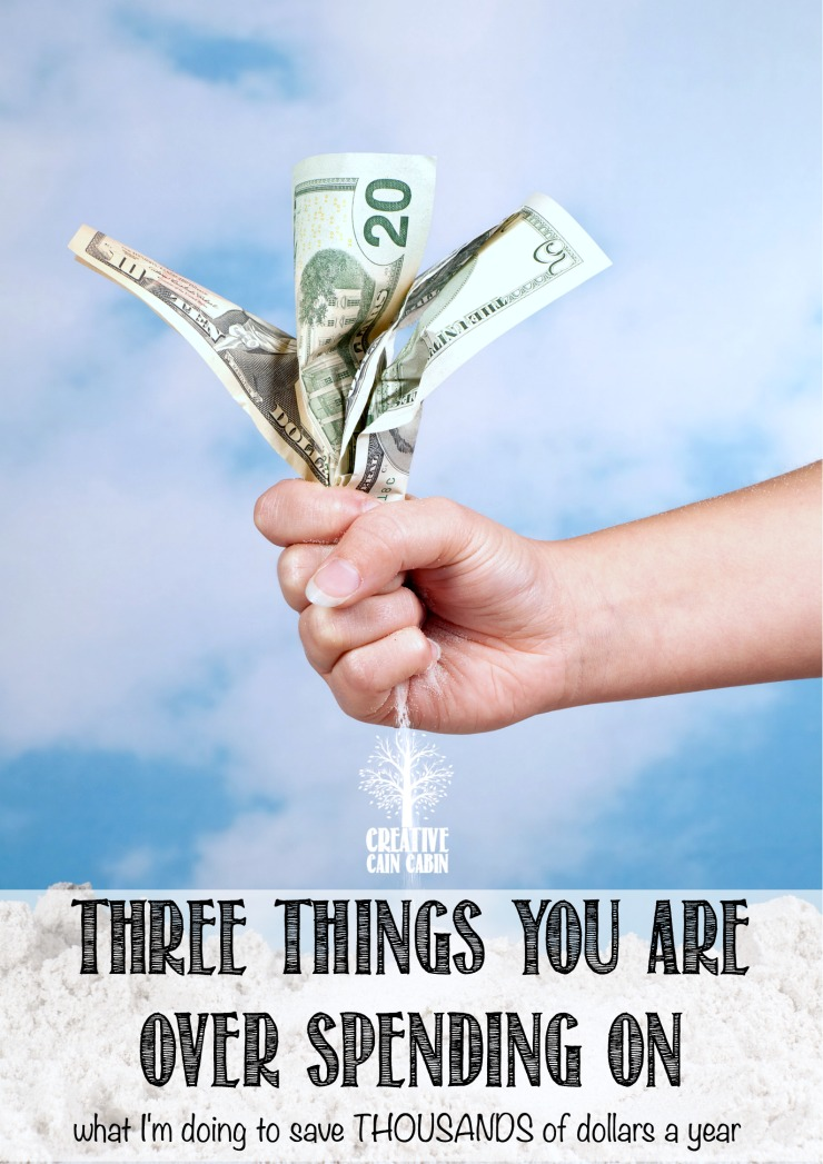 The 3 Simple Changes I Made To Save Thousands Of Dollars A Year   CreativeCainCabin.com