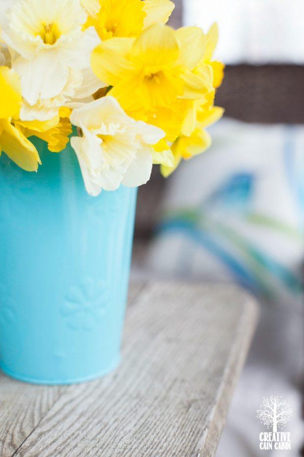 Daffodils | CreativeCainCabin.com