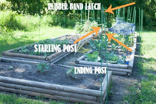 How to Make a Fishing Line Deer Fence for Your Garaden | CreativeCainCabin.com