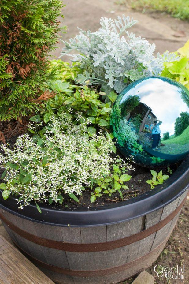 Whiskey Barrel Gazing Ball Garden | Garden | Container Garden | CreativeCainCabin.com