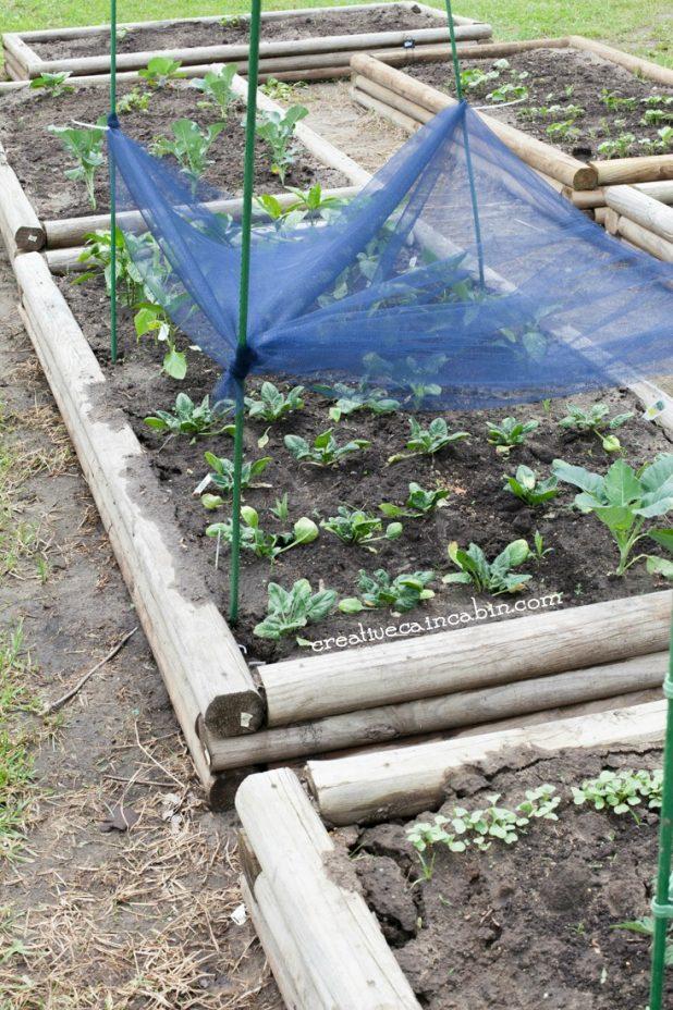 How to Make Garden Shade Cloth On a Budget | DIY Garden Shade Cloth | CreativeCainCabin.com