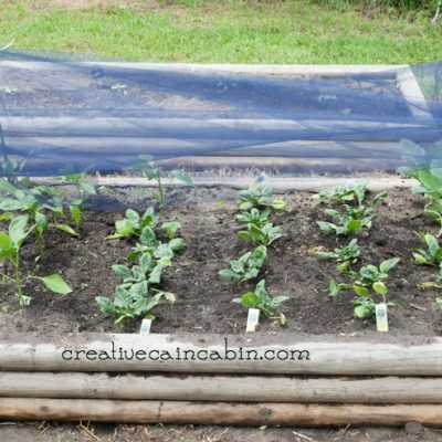DIY Garden Shade Cloth