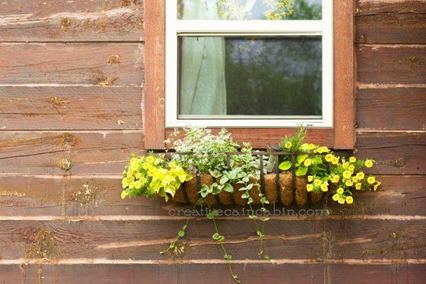 Rustic Window Flower Box   CreativeCainCabin.com