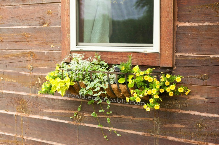 Rustic Window Flower Box | CreativeCainCabin.com