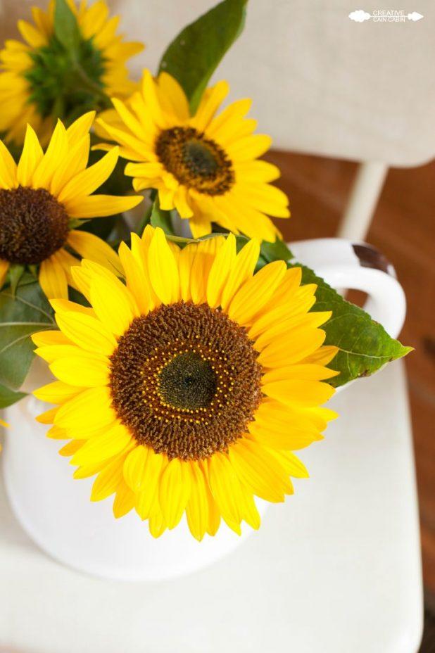 Sunflowers | CreativeCainCabin.com